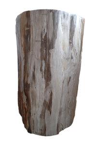 bijzettafel versteend hout, fossiel hout, petrified wood