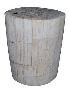 bijzettafel boomstam versteend hout, fossiel hout, petrified wood