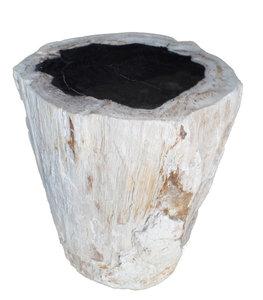 bijzettafel boomstam versteend hout, fossiel hout, petrified wood, zijaanzicht